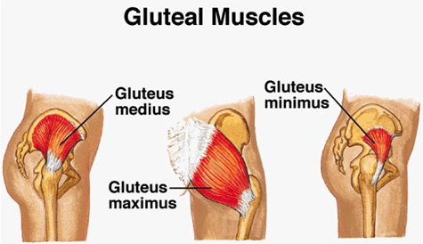 Patients with gluteus medius or minimus partial or complete tears typically have pain on the outside of their hip, as opposed to patients with hip arthritis ...
